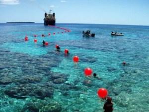 Telefónica negó estar detrás del cable submarino de Venezuela a Cuba