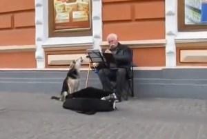 Conmovedor dúo musical entre un perro y su dueño (Video)