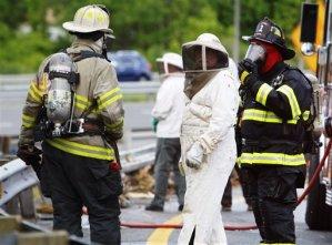 Millones de abejas se fugan por choque en Delaware (Fotos)