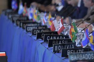 Consejo Permanente de la OEA exige elecciones en Bolivia lo más pronto posible
