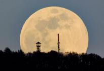 """La """"luna de gusano"""", la superluna que no se ve desde hace casi 40 años y la última del año"""