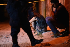 Al menos 13 personas fueron asesinadas por un grupo armado durante fiesta familiar en México