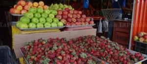 Fresas, manzanas y peras están impagables en Lara