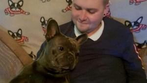 Triste historia… Perro muere 15 minutos después de que su dueño perdiera la batalla contra el cáncer