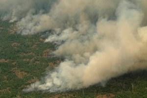El humo de los incendios en la Amazonía llegó a Argentina