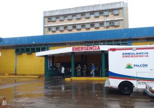 Siamesas nacidas en Falcón podrían ser trasladadas a Caracas para una cirugía