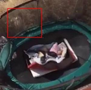 """VIRAL: Se lanzó sobre un trampolín y se le apareció la niña de """"El Aro"""" (Sape Gato)"""