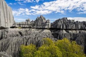 ¿Te animarías a recorrer el bosque de piedras más grande del planeta?