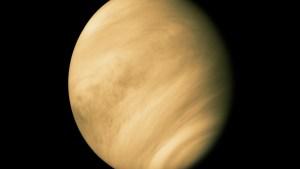 Buscando la verdad: La Nasa evalúa dos misiones a Venus tras el descubrimiento de un indicio de vida