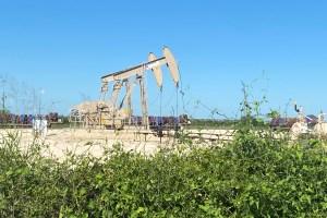 Petróleo cae por aumento de infecciones de Covid-19