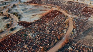 Centenares de fosas fueron cavadas en cementerio de Sudáfrica mientras aumentan las víctimas del coronavirus (FOTOS)