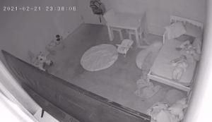 """Momento en el que niña fue arrastrada por un """"fantasma"""" debajo de su cama (VIDEO)"""