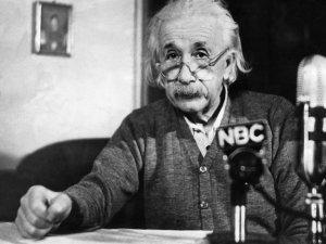 Einstein predijo la existencia de un sexto sentido en las aves