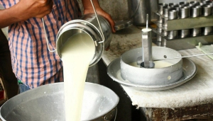 Venezuela con el consumo de leche per cápita más bajo de Latinoamérica