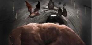 Hallan restos de un murciélago vampiro gigante de 100 mil años en una cueva argentina